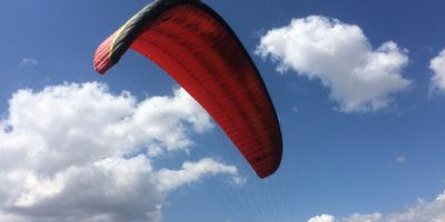 Wings / Paragliders